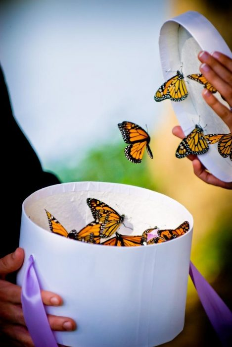 Inspiración Mariposas En Tu Boda La Quinta De Jarama