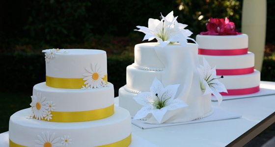 looney-cakes