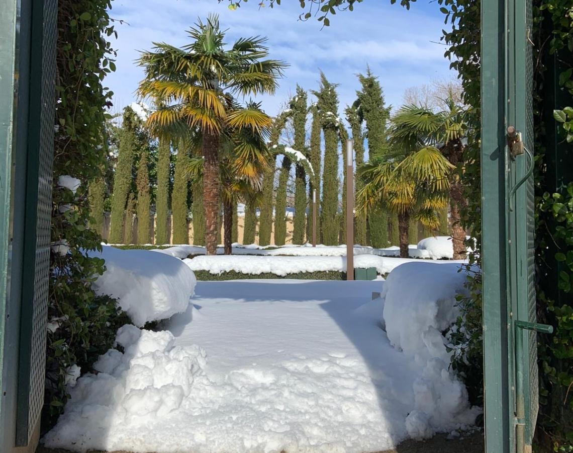 la-quinta-de-jarama-nevada-4